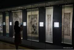 徐渭、陈淳书画bodog博狗娱乐登录特展在南京博物院举办