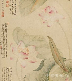 唐炗恽寿平红莲绿藻图轴